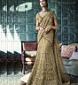 Beige Lehenga Choli - Online Shopping India
