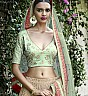 see Green Lehenga Choli - Online Shopping India